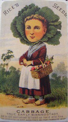 cabbageWoman